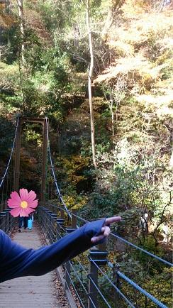 高尾山 つり橋