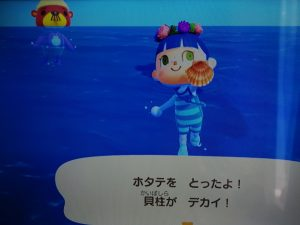 © 2020 Nintendoホタテ