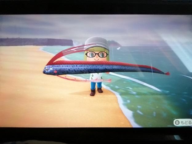 © 2020 Nintendo 竜宮のつかい