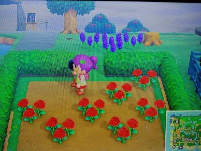© 2020 Nintendo スーの徒然日記 お花交配